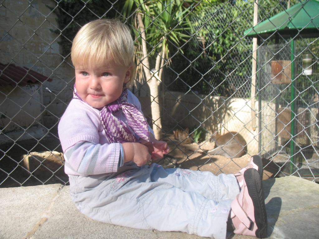 кенгуру и я!!!. В зоопарке