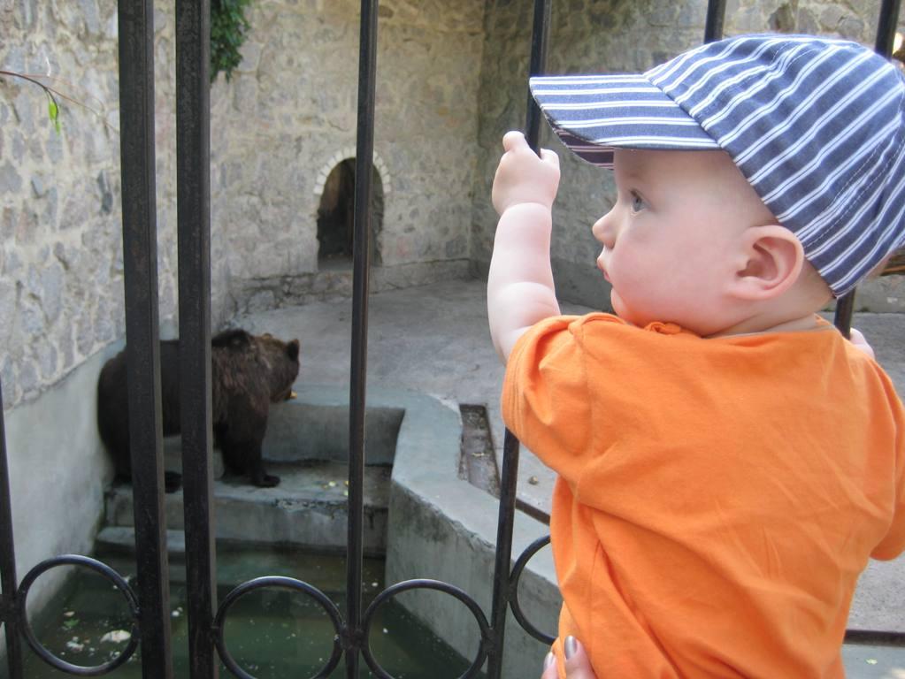 В зоопарке. В зоопарке