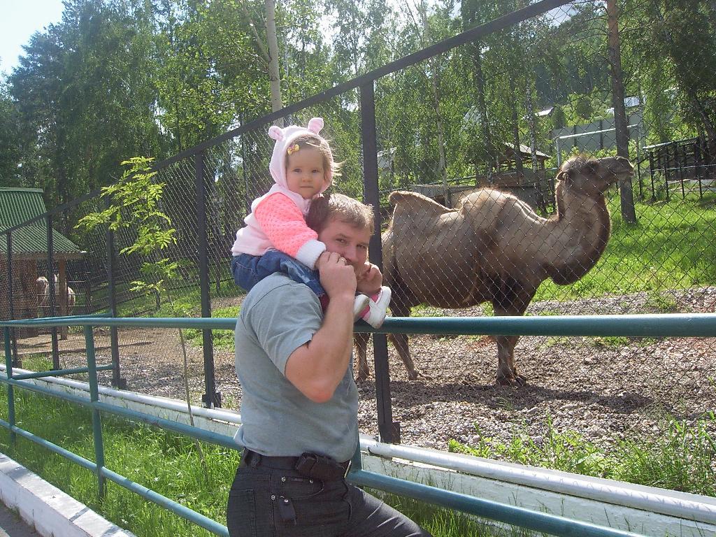 Вот верблюд,а на верблюде возят кладь и ездят люди. В зоопарке
