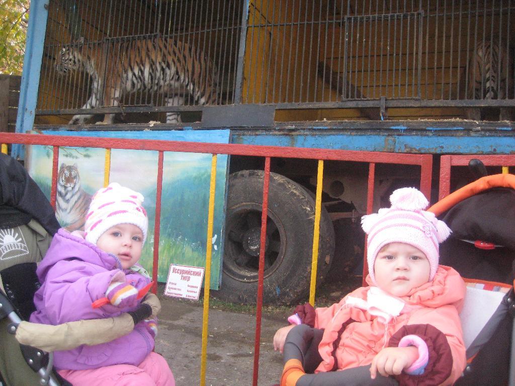 В зоопарке. Наши меньшие друзья