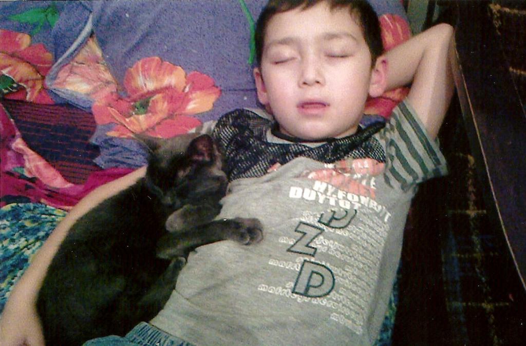 Вместе с другом спится слаще.. Наши меньшие друзья