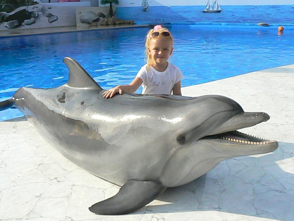 Дельфин и Русалка. Наши меньшие друзья