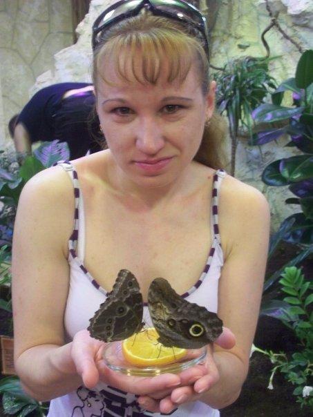 я и бабочки. Наши меньшие друзья