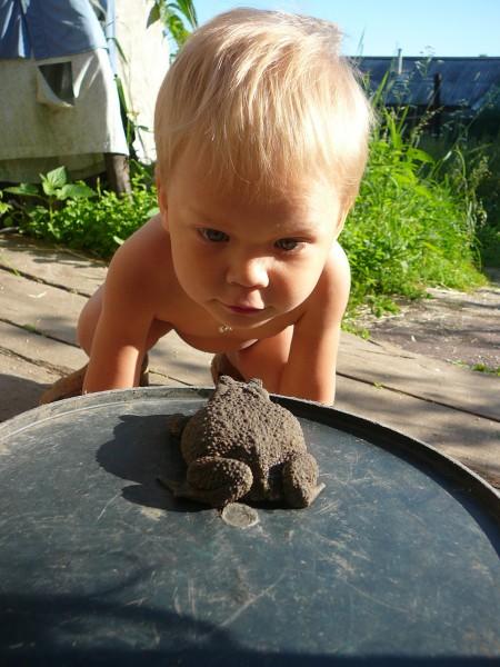 Рома и царевна лягушка. Закрытое голосование фотоконкурса 'Наши меньшие друзья'