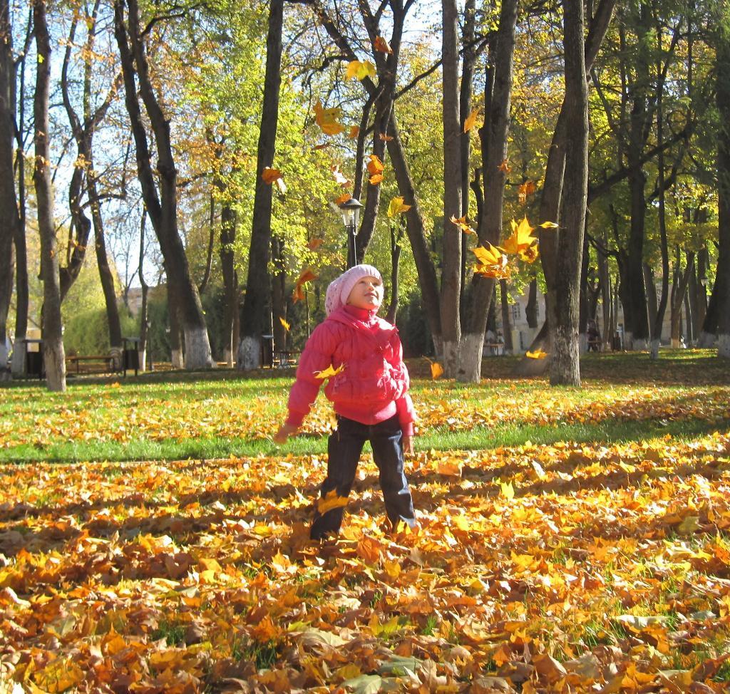 Золотое сияние. Закрытое голосование фотоконкурса 'Осенняя прогулка'