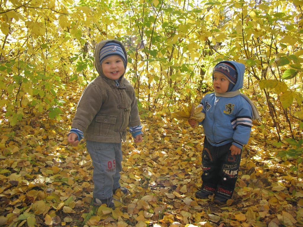Осенние деньки.. Осенняя прогулка