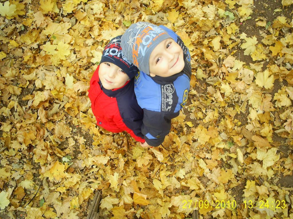 Осень золотая. Осенняя прогулка
