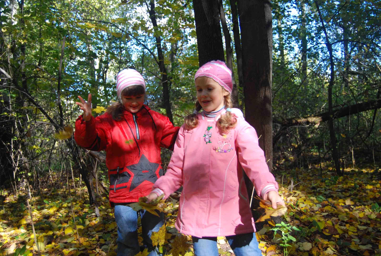 Осенний лес. Осенняя прогулка