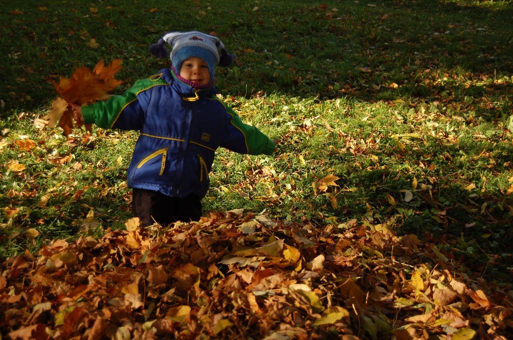 листьев то сколько!!. Осенняя прогулка