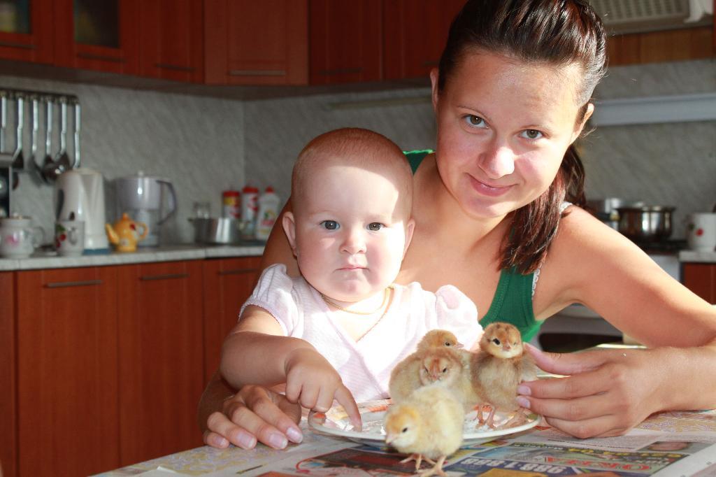 Цыпа-цыпа...мои цыпляточки))). Наши меньшие друзья