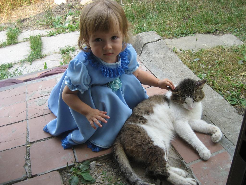 Какой мягкий котик, а главное настоящий. Наши меньшие друзья