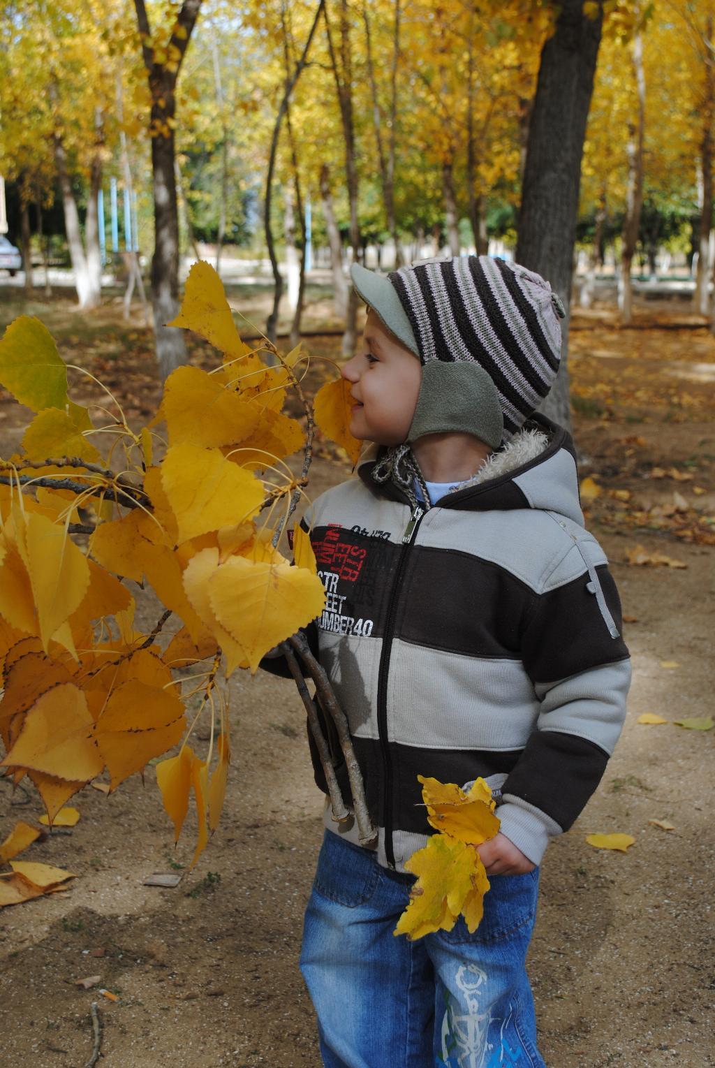Осенние листики!!!. Осенняя прогулка