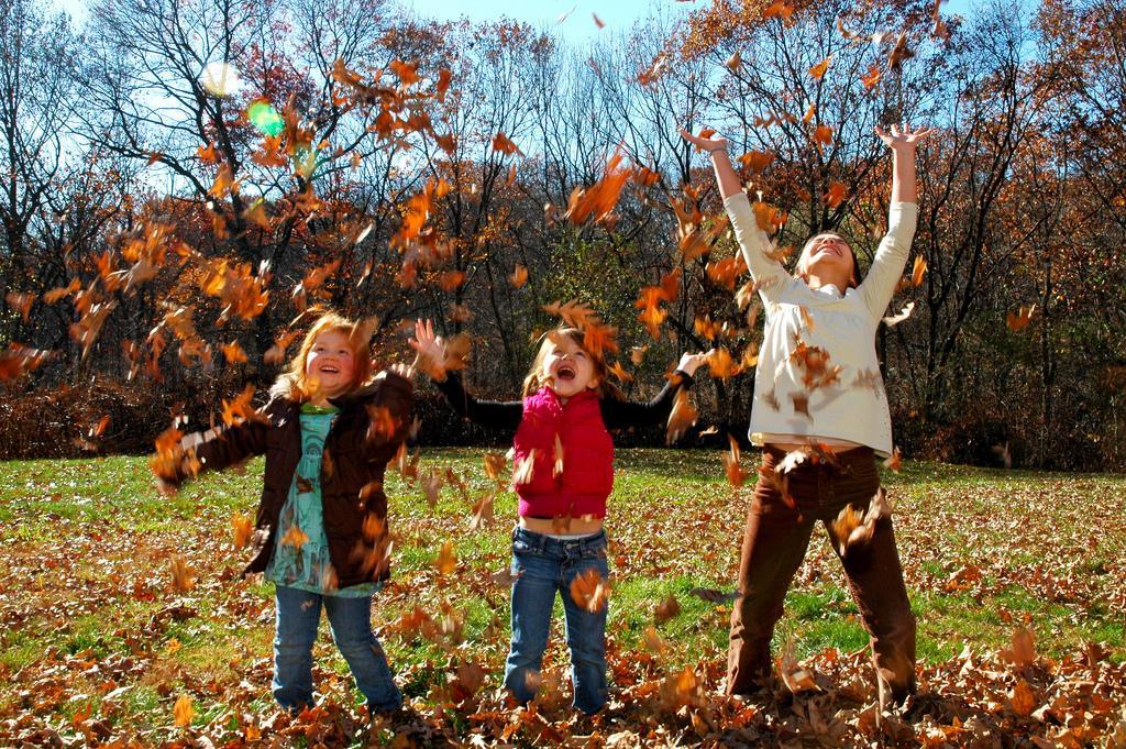 Здравствуй, Осень!. Закрытое голосование фотоконкурса 'Осенняя прогулка'