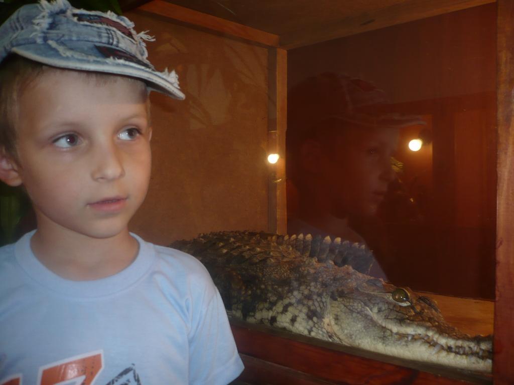 А я вот с крокодилом!. Наши меньшие друзья