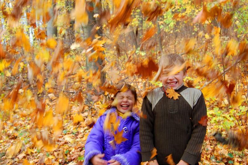 Листопад!. Осенняя прогулка
