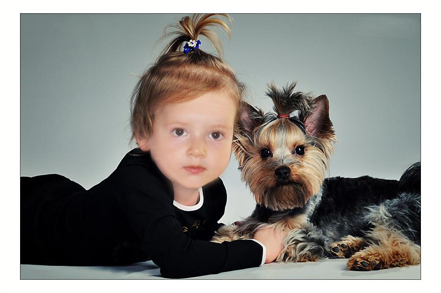 моя собачка!. Закрытое голосование фотоконкурса 'Наши меньшие друзья'
