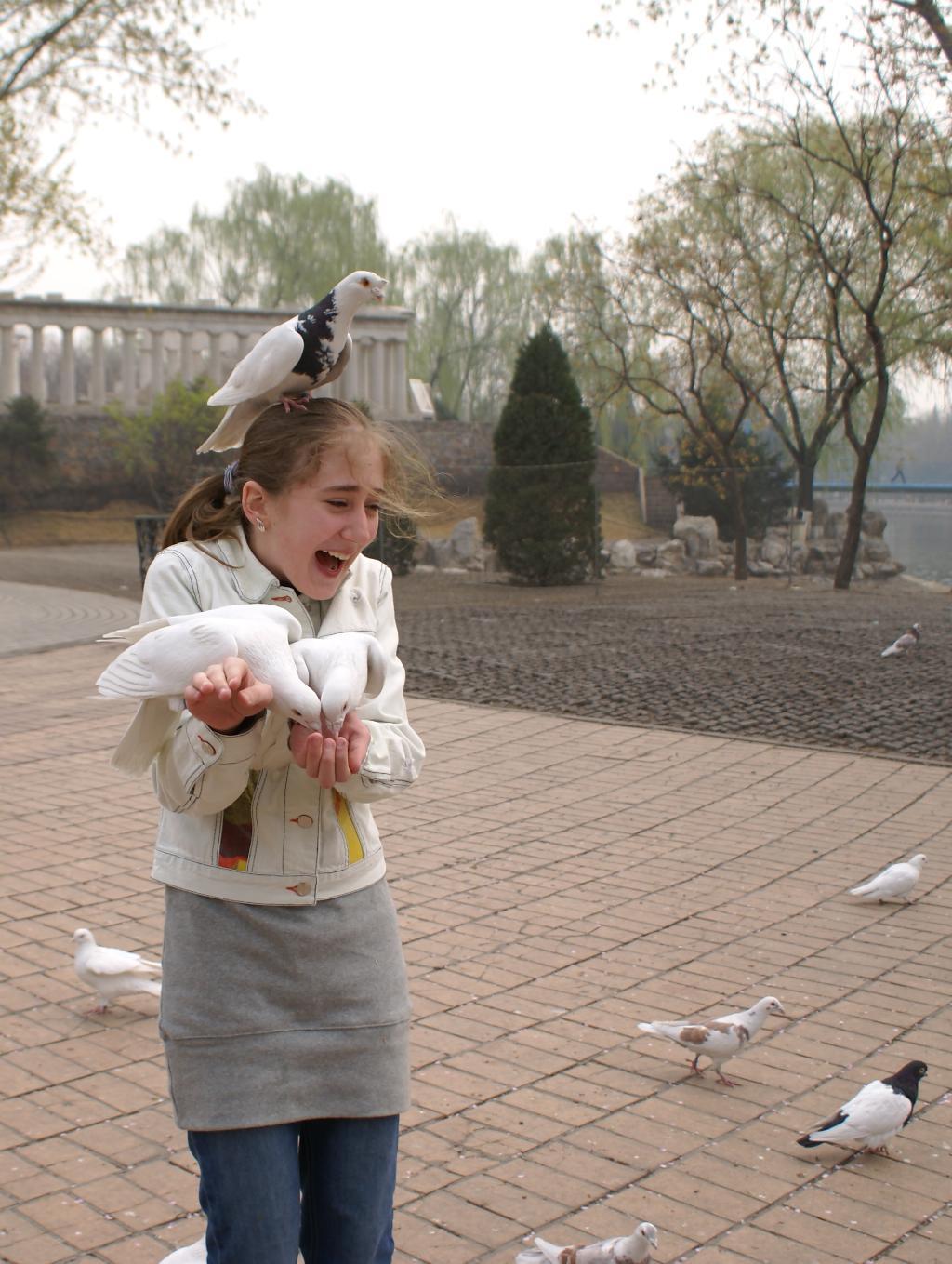 Ох уж эти птицы мира.... Наши меньшие друзья