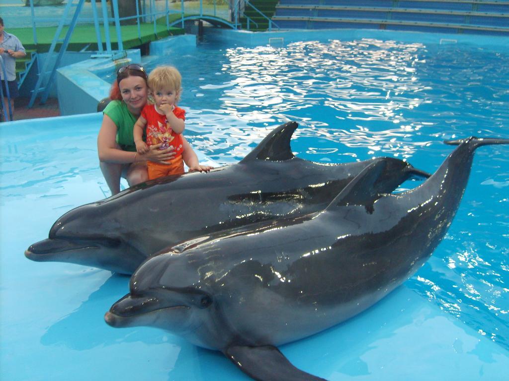 С дельфинами. Наши меньшие друзья