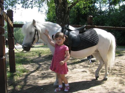 Я люблю свою лошадку. Наши меньшие друзья