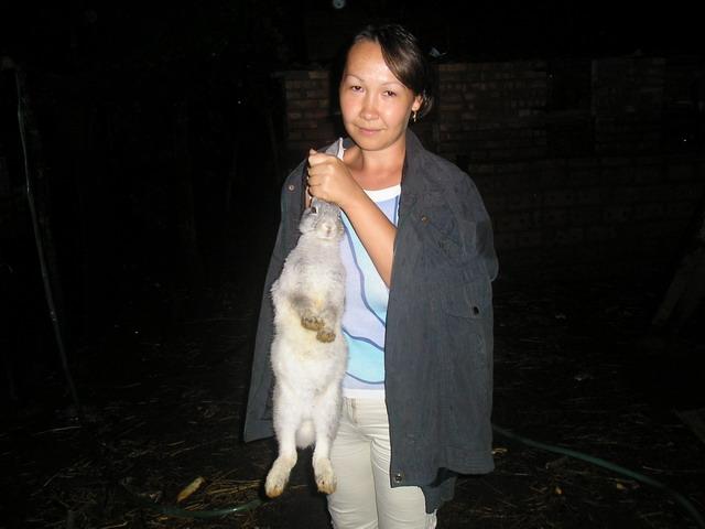 Кролик - не только ценный мех, а и символ 2011года. Наши меньшие друзья