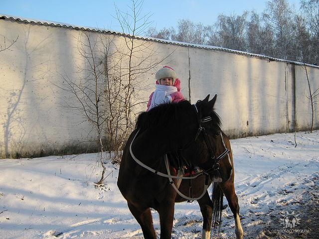 Я люблю свою лошадку.... Наши меньшие друзья