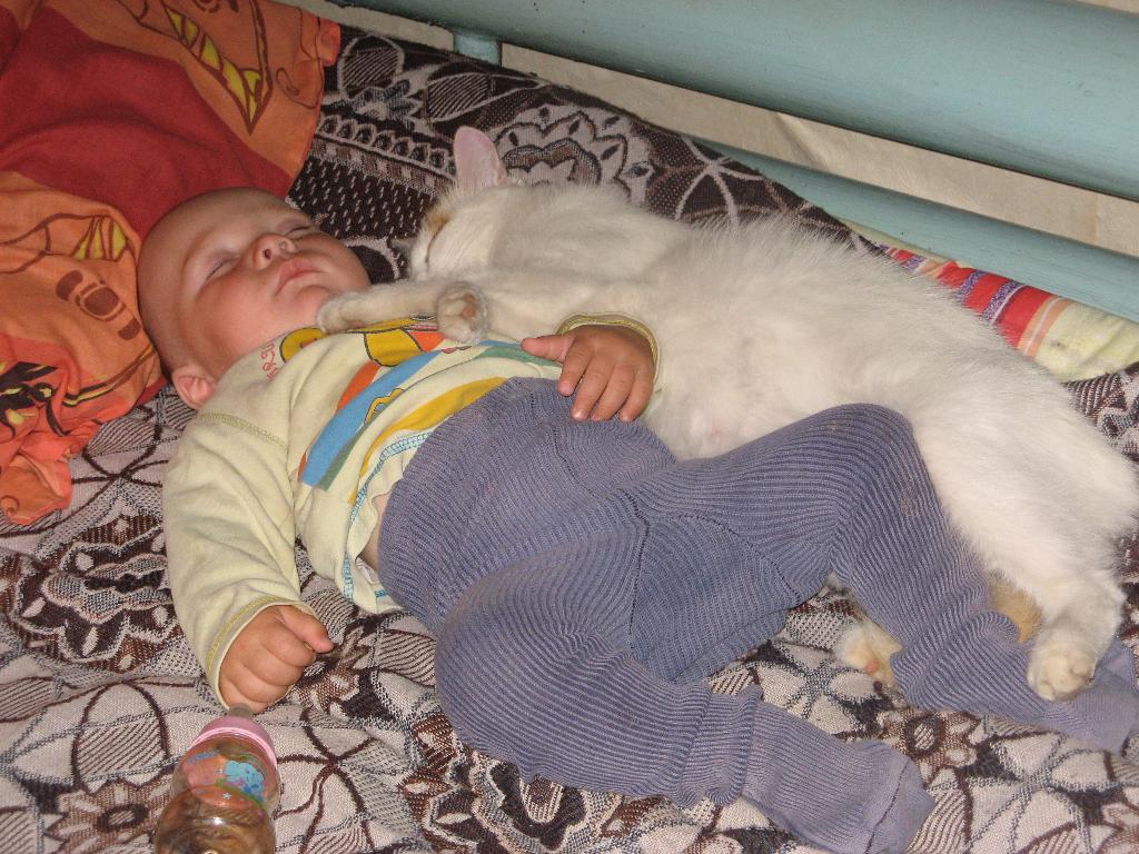 мой сынок Витюшка и наша кошка Ксюшка. Наши меньшие друзья