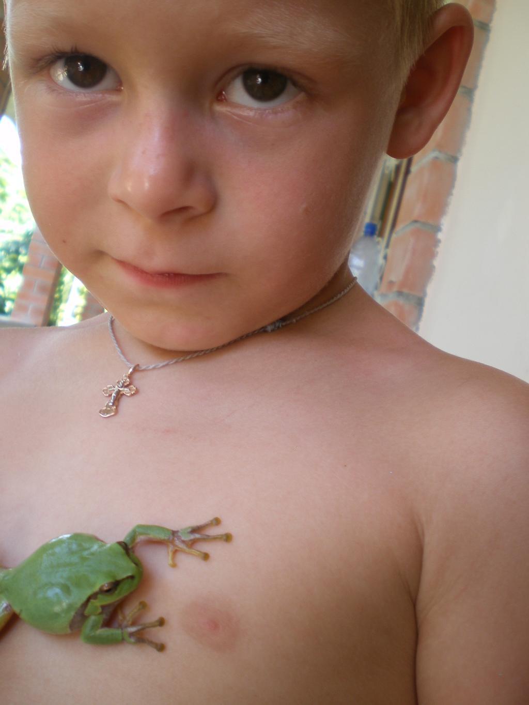 Моя царевна лягушка. Наши меньшие друзья