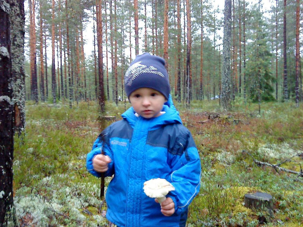 Юный грибник.. Осенняя прогулка