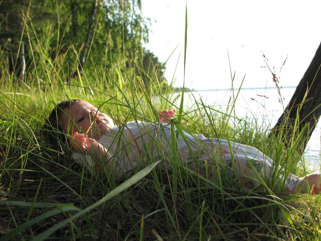 Дары Земли Сибирской)))). Мое первое лето