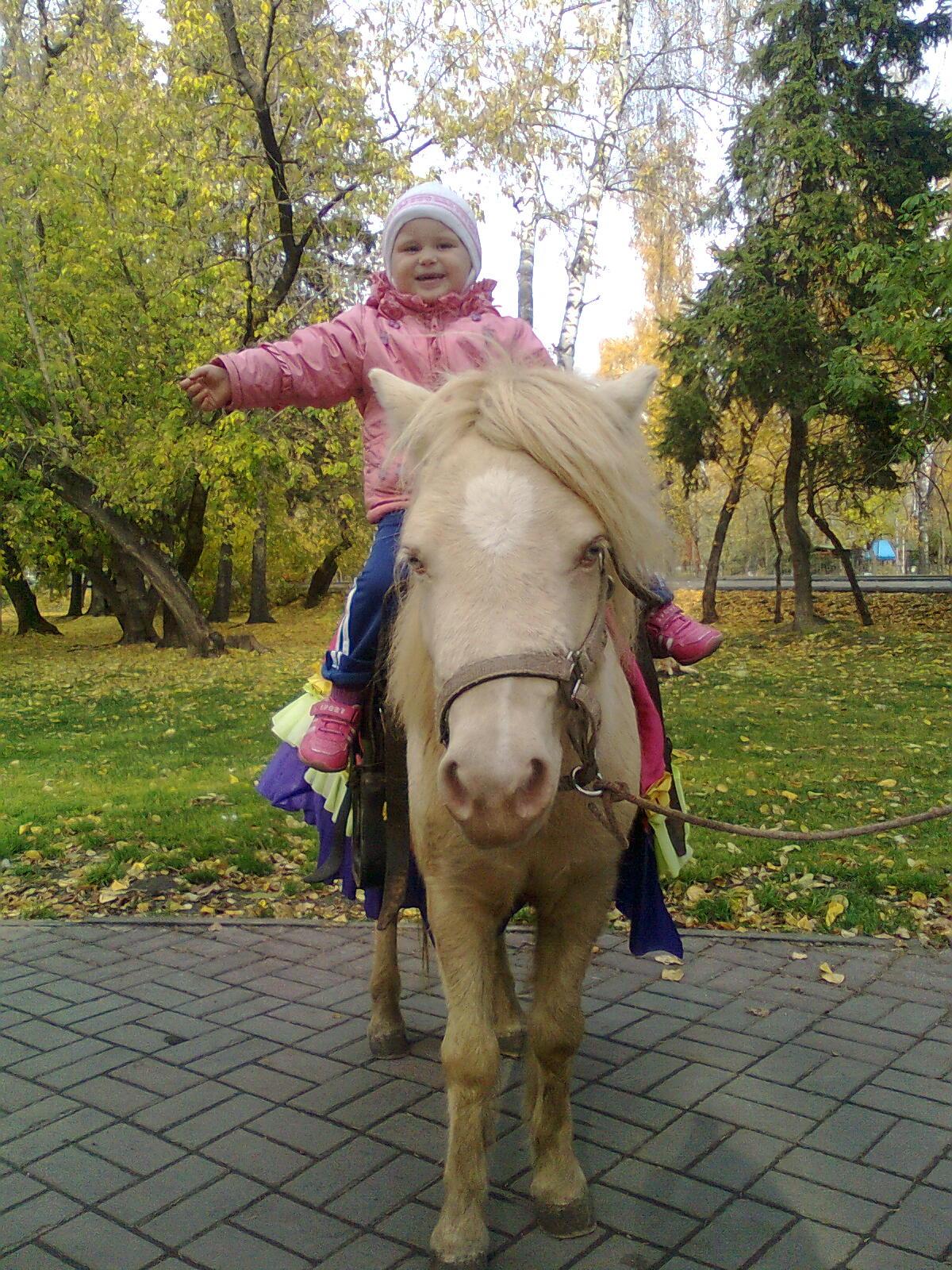 Я из Томска!. Осенняя прогулка