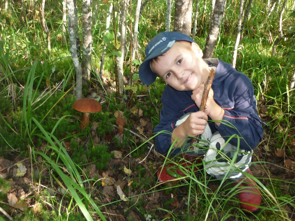 По грибы, по ягодки.... Закрытое голосование фотоконкурса 'Осенняя прогулка'