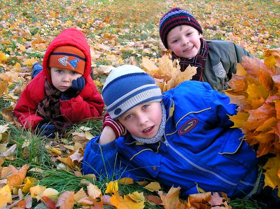 Наигрались во дворе, полежим на листве!. Закрытое голосование фотоконкурса 'Осенняя прогулка'