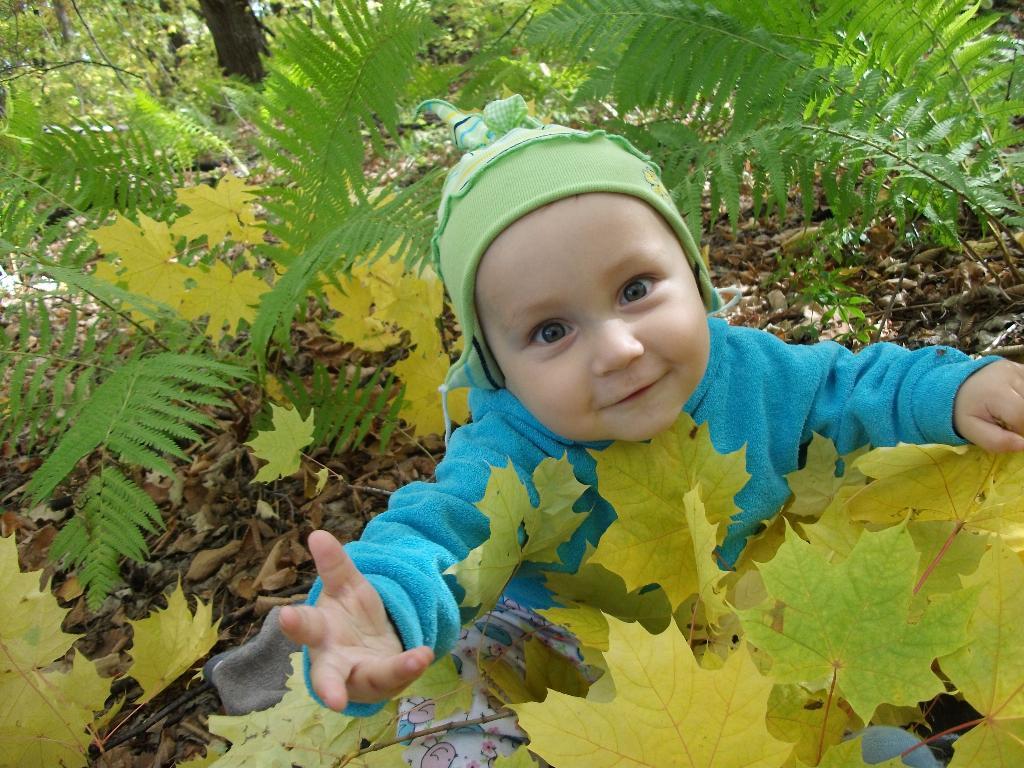 Осень. Малыш на обложку