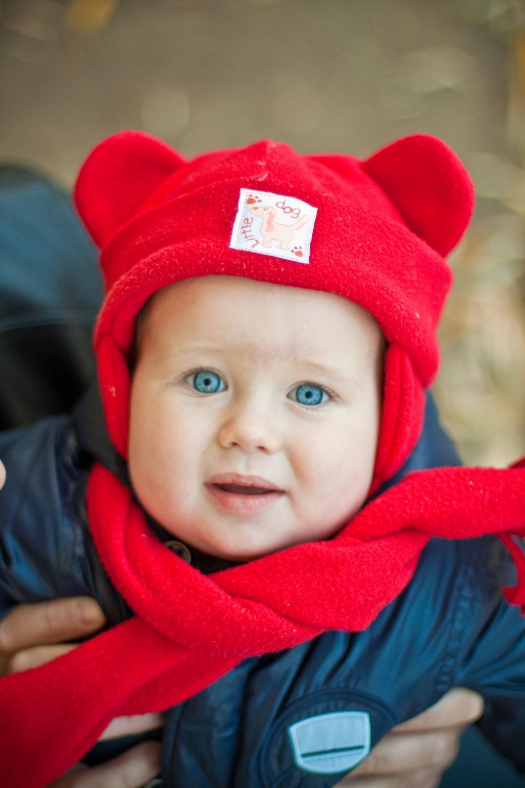 Голубоглазый медвежонок :))). Малыш на обложку