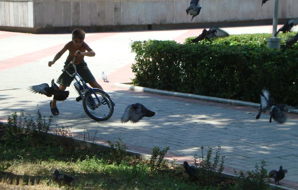 Велогонщик!!!. Закрытое голосование фотоконкурса 'Укрощение велосипеда'