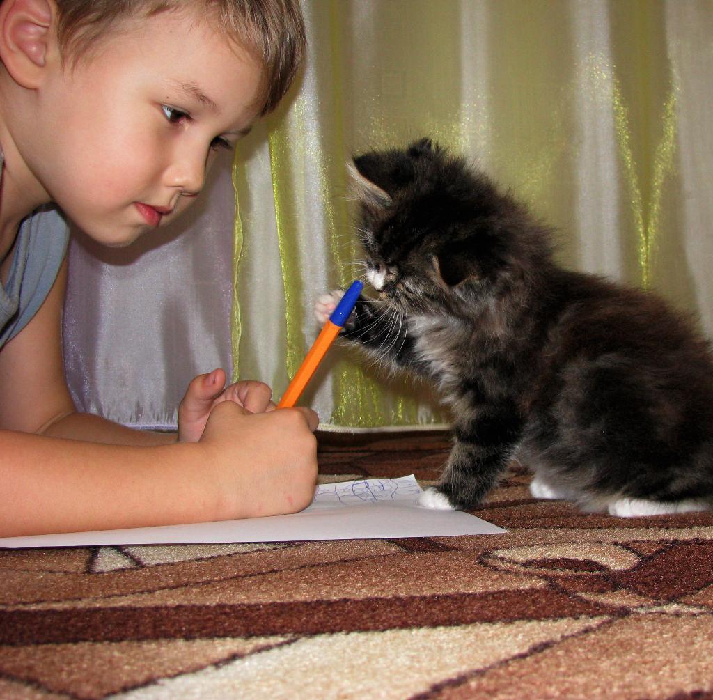 Рисуем вместе. Закрытое голосование фотоконкурса 'Я рисую'