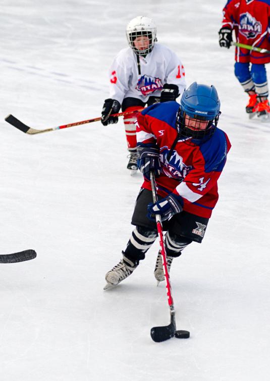 Трус не играет в хоккей!. Закрытое голосование фотоконкурса 'Вперед, к победе!'