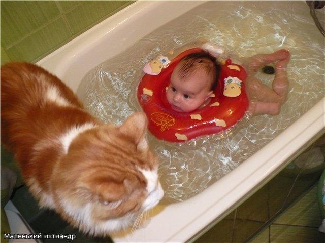 Хочу до того тигра доплыть... Играем в ванной