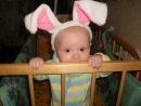всех с2011  годом кролика!!!. Новогодний карнавал