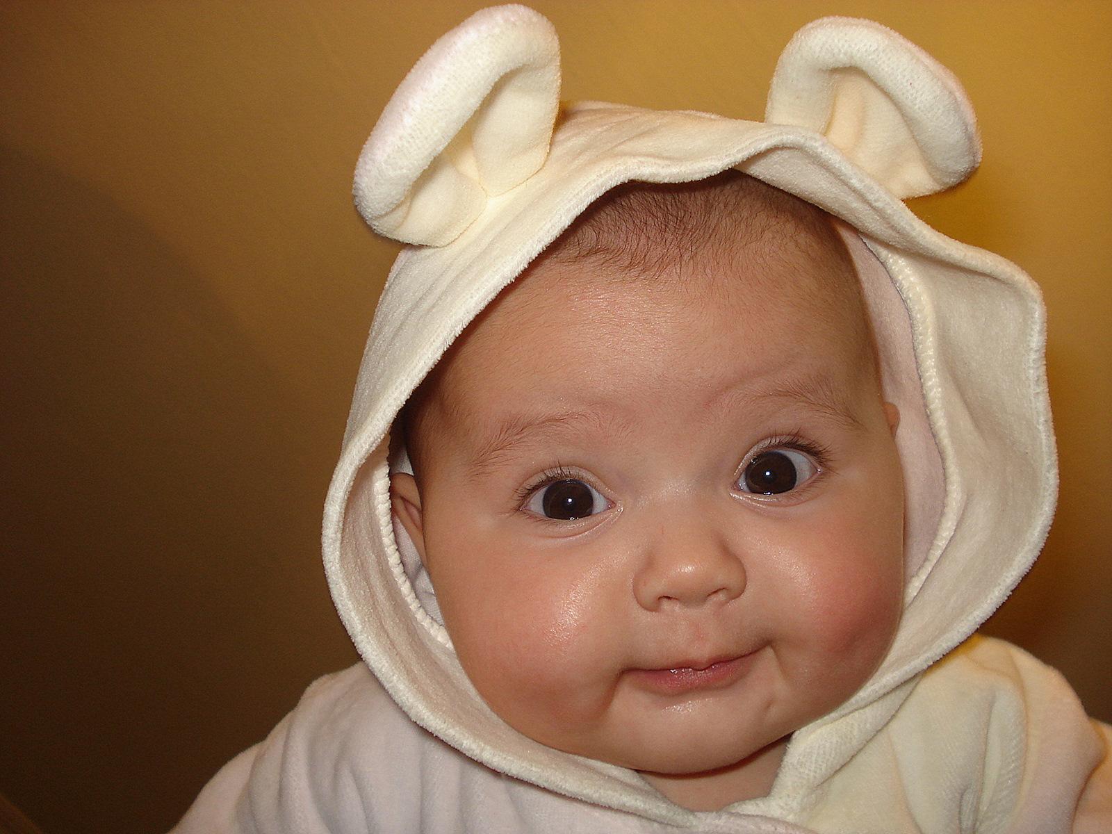 Медвежонок. Малыш на обложку