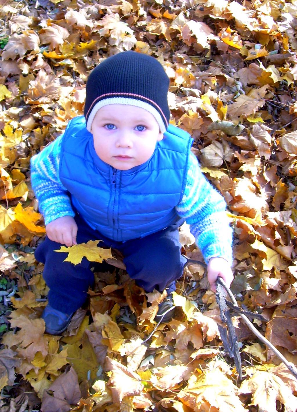 Осенняя прогулочка. Малыш на обложку