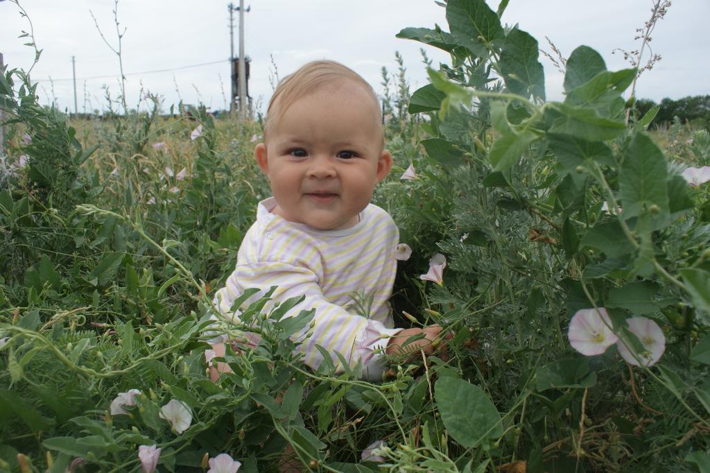 Цветочек Маргарита!  :). Малыш на обложку