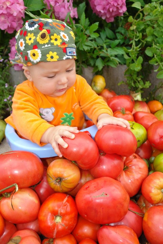 Раз помидорка, два помидорка, маме помога на зиму . Закрытое голосование фотоконкурса 'Маленькие помощники'