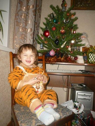 Новый год!год тигра!. Новый год