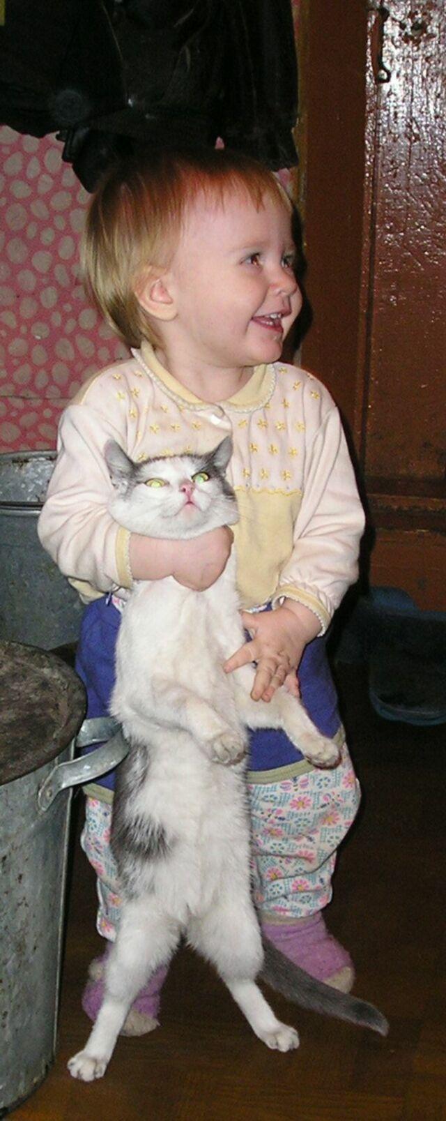 с кошкой. Кошки