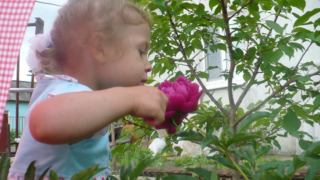 Какой аромат.... Юный натуралист