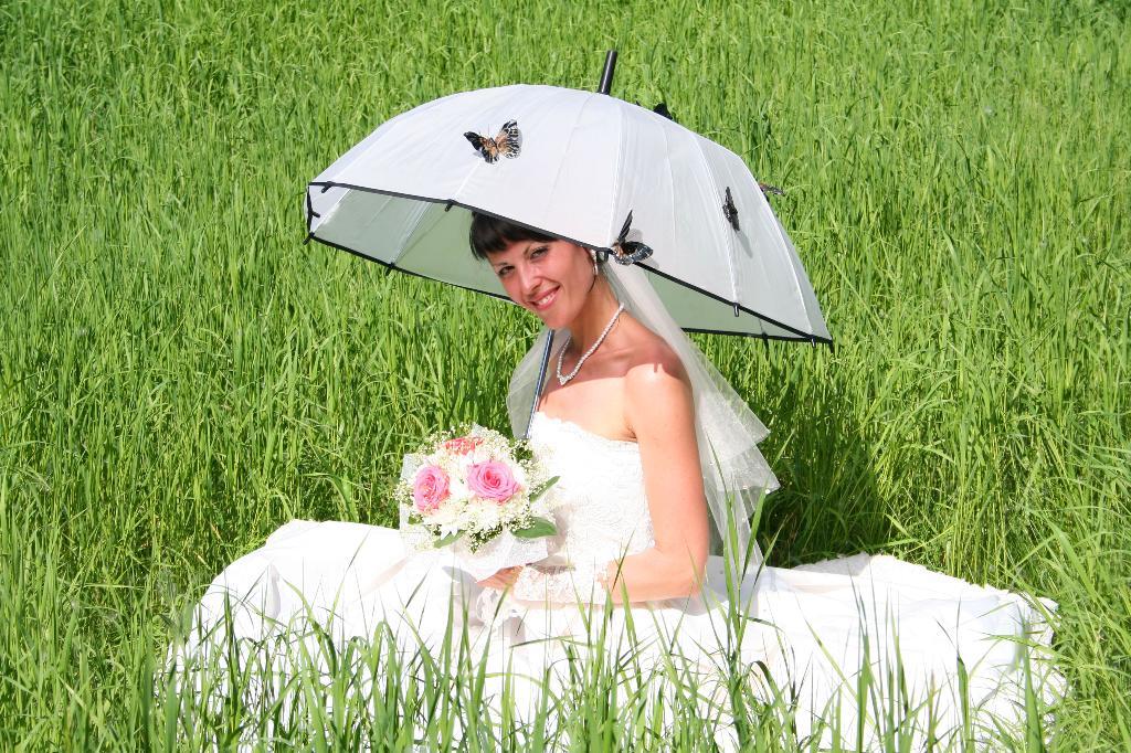 Бабочки :). Да здравствует дождь!