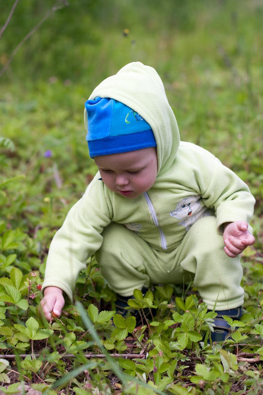 Сладкий мальчик и сладкая ягодка. Юный натуралист