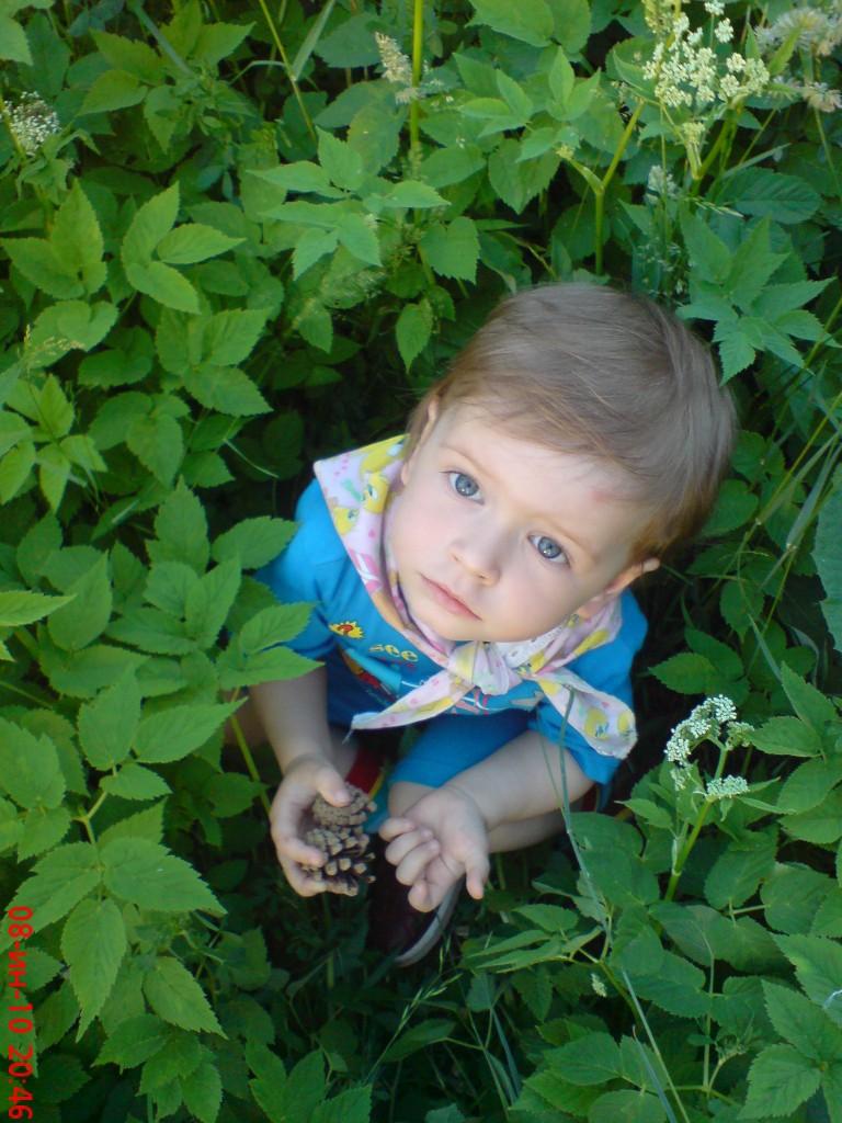 Изучаем растительный мир.. Юный натуралист