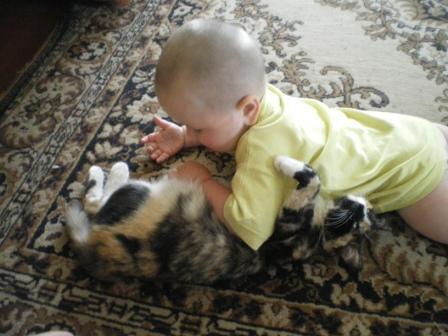 Моя любимая киса. Кошки-мышки